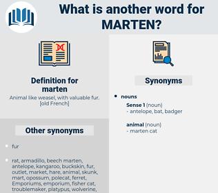 marten, synonym marten, another word for marten, words like marten, thesaurus marten