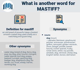 mastiff, synonym mastiff, another word for mastiff, words like mastiff, thesaurus mastiff