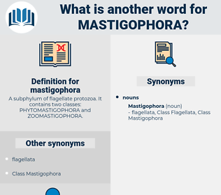 mastigophora, synonym mastigophora, another word for mastigophora, words like mastigophora, thesaurus mastigophora