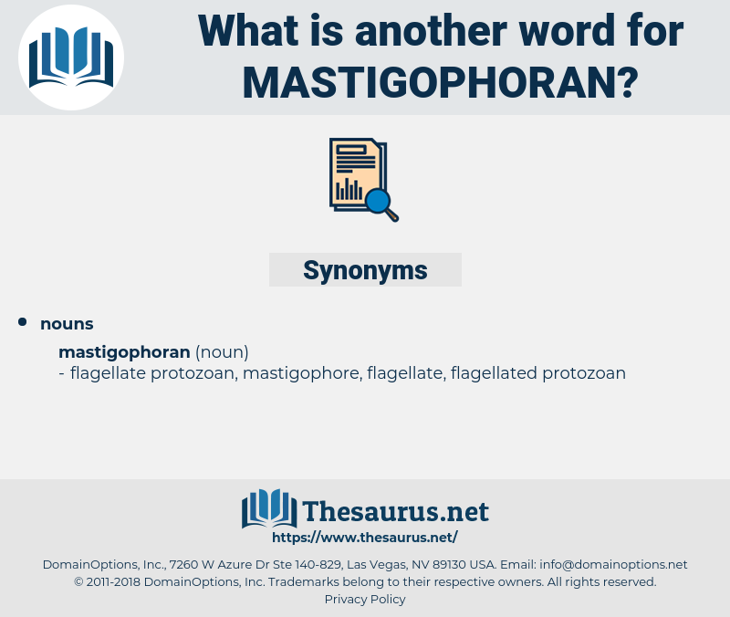 mastigophoran, synonym mastigophoran, another word for mastigophoran, words like mastigophoran, thesaurus mastigophoran