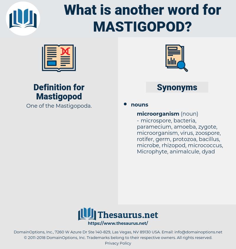 Mastigopod, synonym Mastigopod, another word for Mastigopod, words like Mastigopod, thesaurus Mastigopod
