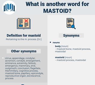mastoid, synonym mastoid, another word for mastoid, words like mastoid, thesaurus mastoid