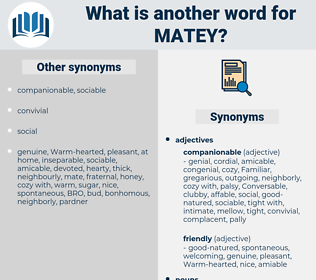 matey, synonym matey, another word for matey, words like matey, thesaurus matey