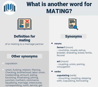 mating, synonym mating, another word for mating, words like mating, thesaurus mating
