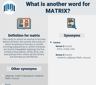 matrix, synonym matrix, another word for matrix, words like matrix, thesaurus matrix