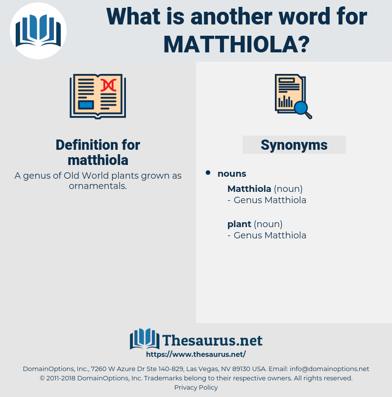 matthiola, synonym matthiola, another word for matthiola, words like matthiola, thesaurus matthiola