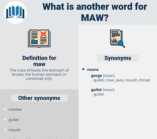 maw, synonym maw, another word for maw, words like maw, thesaurus maw