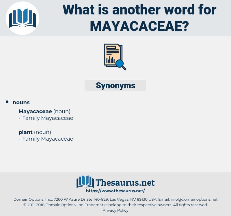 mayacaceae, synonym mayacaceae, another word for mayacaceae, words like mayacaceae, thesaurus mayacaceae