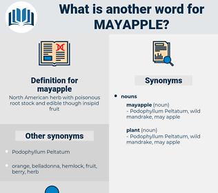 mayapple, synonym mayapple, another word for mayapple, words like mayapple, thesaurus mayapple