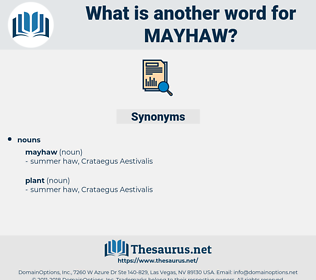 mayhaw, synonym mayhaw, another word for mayhaw, words like mayhaw, thesaurus mayhaw