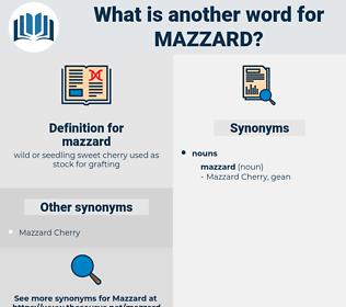 mazzard, synonym mazzard, another word for mazzard, words like mazzard, thesaurus mazzard