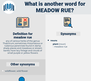 meadow rue, synonym meadow rue, another word for meadow rue, words like meadow rue, thesaurus meadow rue