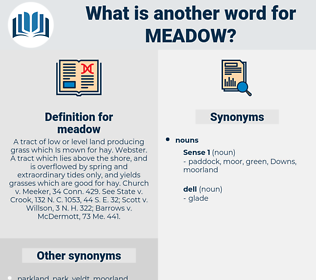 meadow, synonym meadow, another word for meadow, words like meadow, thesaurus meadow