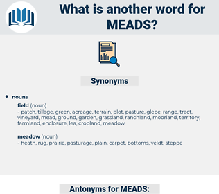 MEADS, synonym MEADS, another word for MEADS, words like MEADS, thesaurus MEADS