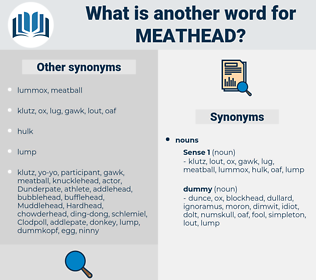 meathead, synonym meathead, another word for meathead, words like meathead, thesaurus meathead