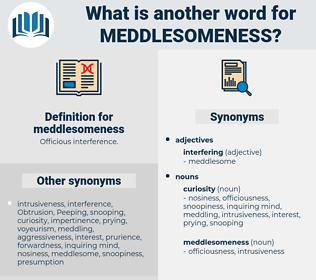 meddlesomeness, synonym meddlesomeness, another word for meddlesomeness, words like meddlesomeness, thesaurus meddlesomeness