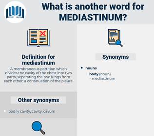 mediastinum, synonym mediastinum, another word for mediastinum, words like mediastinum, thesaurus mediastinum