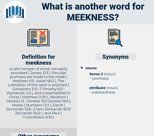meekness, synonym meekness, another word for meekness, words like meekness, thesaurus meekness