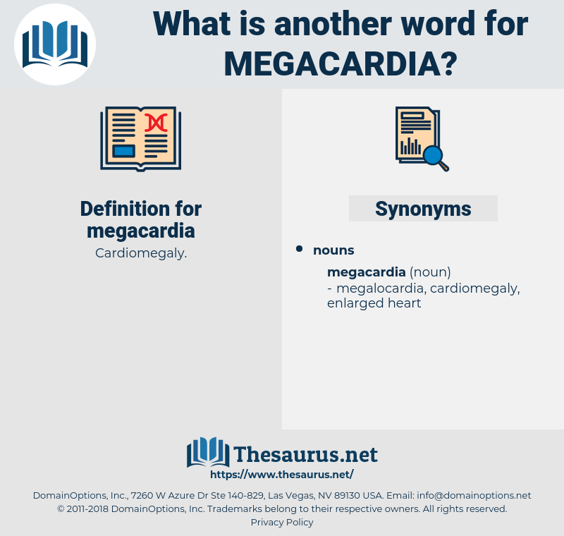 megacardia, synonym megacardia, another word for megacardia, words like megacardia, thesaurus megacardia