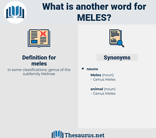 meles, synonym meles, another word for meles, words like meles, thesaurus meles
