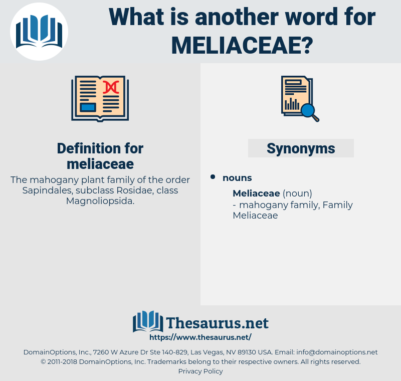 meliaceae, synonym meliaceae, another word for meliaceae, words like meliaceae, thesaurus meliaceae