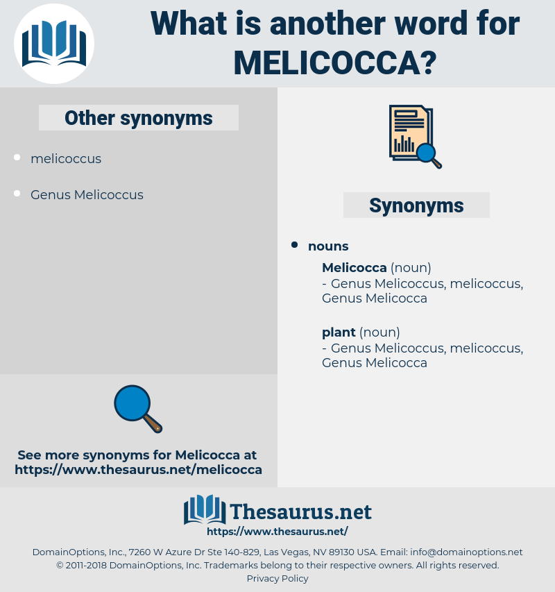 melicocca, synonym melicocca, another word for melicocca, words like melicocca, thesaurus melicocca