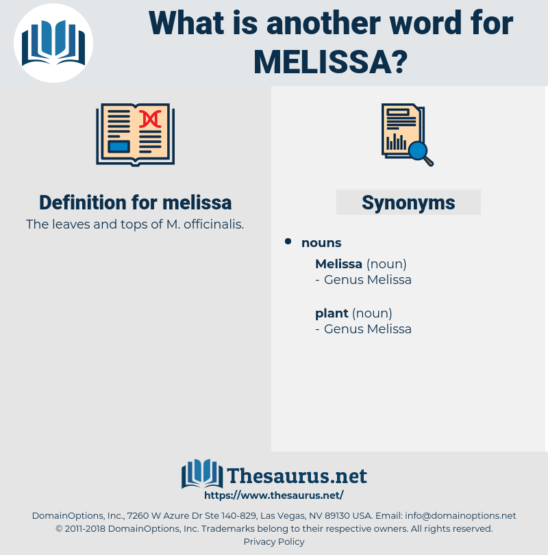 melissa, synonym melissa, another word for melissa, words like melissa, thesaurus melissa