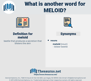 meloid, synonym meloid, another word for meloid, words like meloid, thesaurus meloid