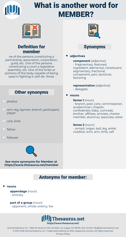 member, synonym member, another word for member, words like member, thesaurus member