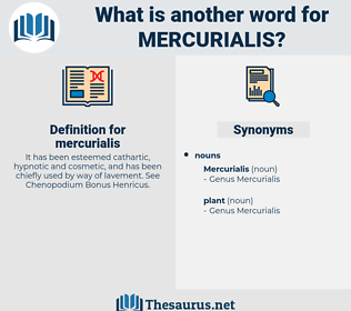 mercurialis, synonym mercurialis, another word for mercurialis, words like mercurialis, thesaurus mercurialis