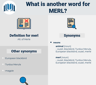 merl, synonym merl, another word for merl, words like merl, thesaurus merl