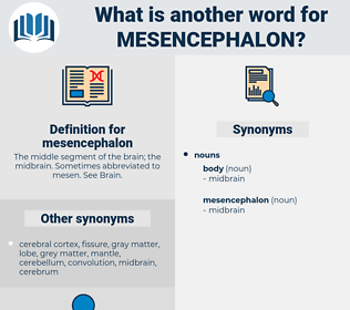 mesencephalon, synonym mesencephalon, another word for mesencephalon, words like mesencephalon, thesaurus mesencephalon