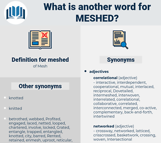 meshed, synonym meshed, another word for meshed, words like meshed, thesaurus meshed