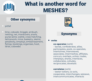 meshes, synonym meshes, another word for meshes, words like meshes, thesaurus meshes
