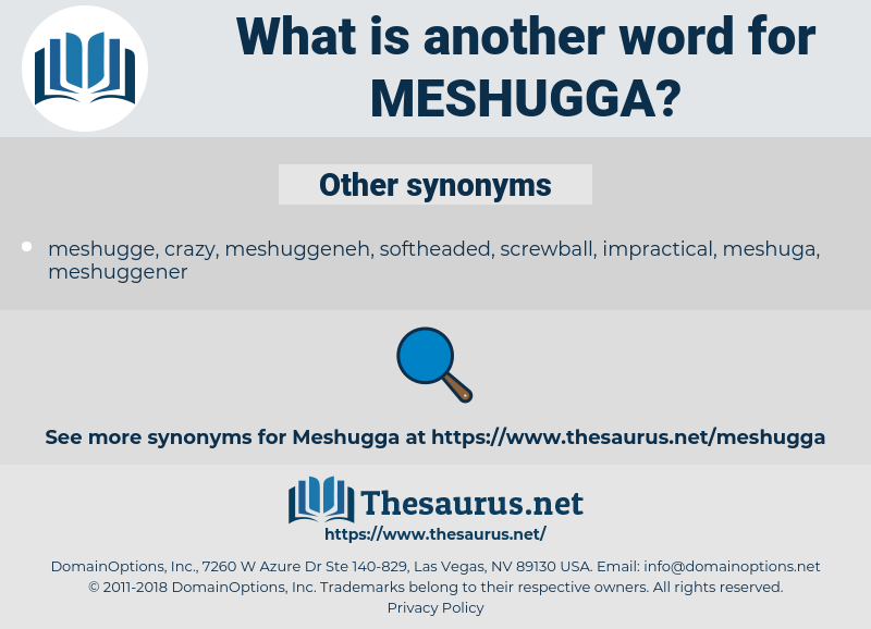 meshugga, synonym meshugga, another word for meshugga, words like meshugga, thesaurus meshugga