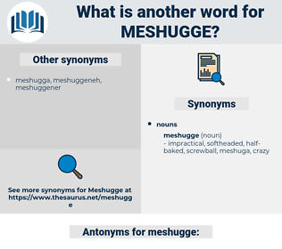 meshugge, synonym meshugge, another word for meshugge, words like meshugge, thesaurus meshugge