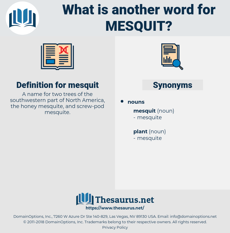 mesquit, synonym mesquit, another word for mesquit, words like mesquit, thesaurus mesquit