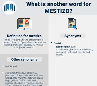 mestizo, synonym mestizo, another word for mestizo, words like mestizo, thesaurus mestizo