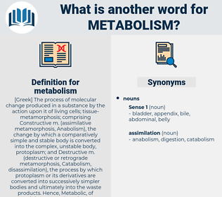metabolism, synonym metabolism, another word for metabolism, words like metabolism, thesaurus metabolism