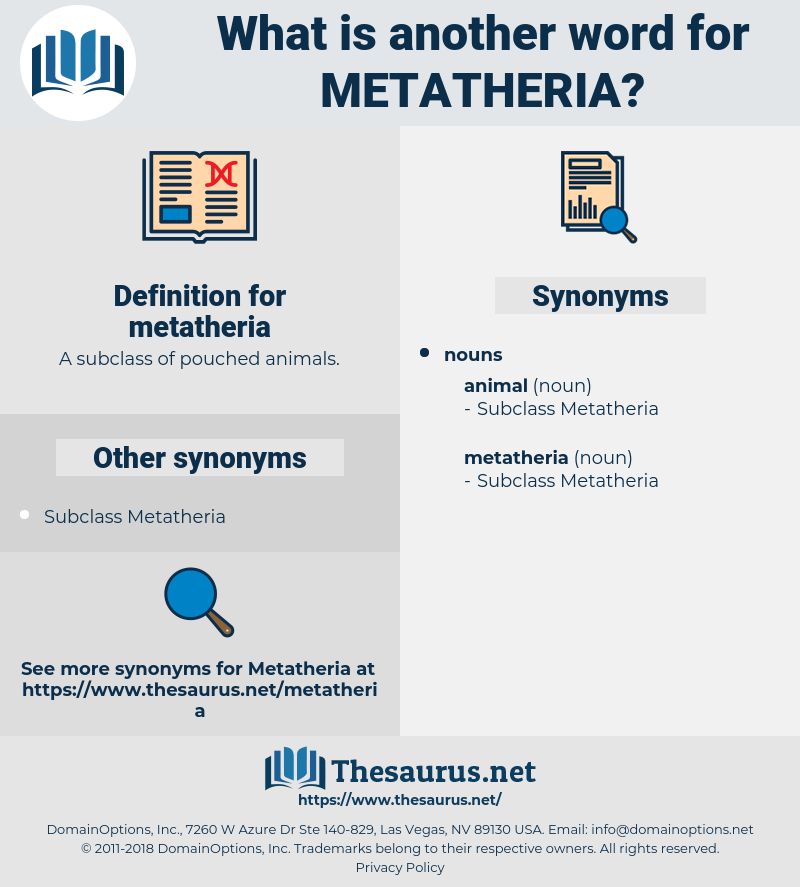 metatheria, synonym metatheria, another word for metatheria, words like metatheria, thesaurus metatheria