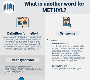 methyl, synonym methyl, another word for methyl, words like methyl, thesaurus methyl