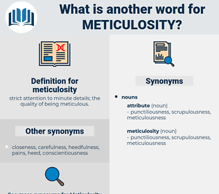 meticulosity, synonym meticulosity, another word for meticulosity, words like meticulosity, thesaurus meticulosity