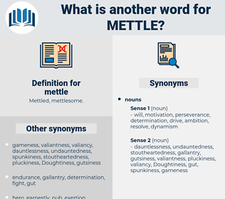 mettle, synonym mettle, another word for mettle, words like mettle, thesaurus mettle
