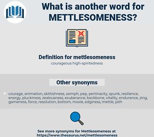 mettlesomeness, synonym mettlesomeness, another word for mettlesomeness, words like mettlesomeness, thesaurus mettlesomeness