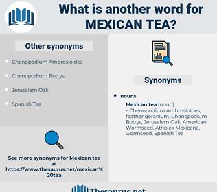 Mexican Tea, synonym Mexican Tea, another word for Mexican Tea, words like Mexican Tea, thesaurus Mexican Tea