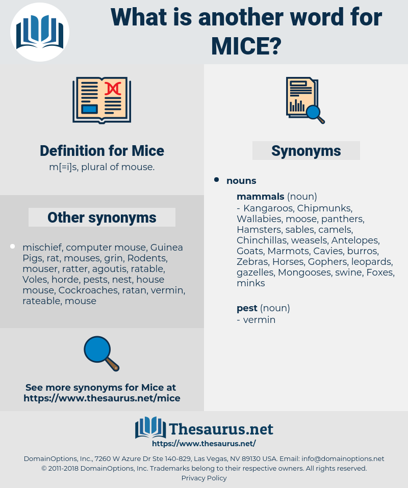 Mice, synonym Mice, another word for Mice, words like Mice, thesaurus Mice