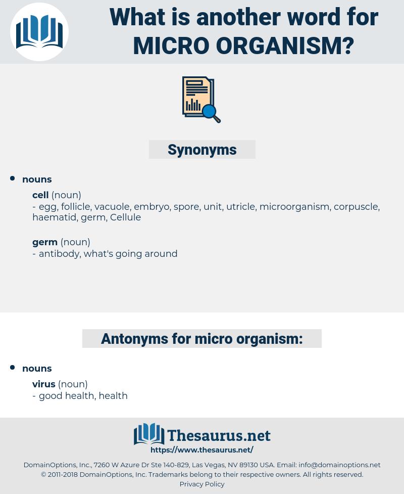 micro-organism, synonym micro-organism, another word for micro-organism, words like micro-organism, thesaurus micro-organism