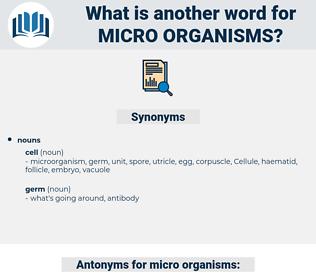 micro-organisms, synonym micro-organisms, another word for micro-organisms, words like micro-organisms, thesaurus micro-organisms