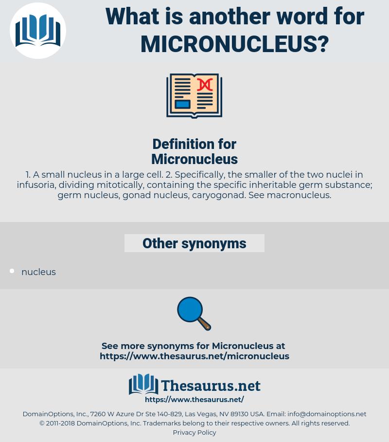 Micronucleus, synonym Micronucleus, another word for Micronucleus, words like Micronucleus, thesaurus Micronucleus