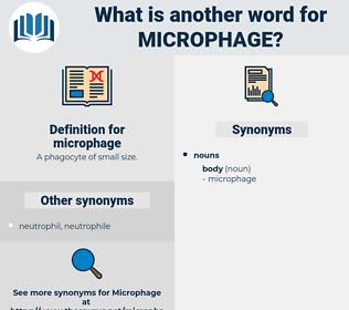 microphage, synonym microphage, another word for microphage, words like microphage, thesaurus microphage